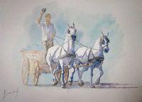 635134276391005921-akvarel-horse-painting-0111